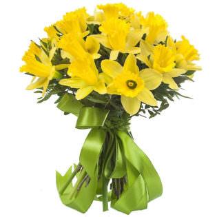 Нарцисс желтый